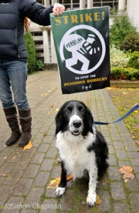 Coco on the picket line at BBC Bristol, Whiteladies Road; 05 November 2010. (Photo © Simon Chapman)
