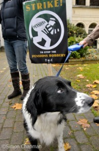 Where did my pension go? Coco on the picket line at BBC Bristol, Whiteladies Road; 05 November 2010. (Photo © Simon Chapman)